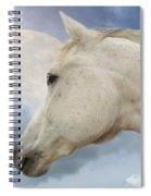 Moon Spirit Spiral Notebook