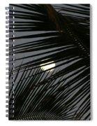 Moon  Through Palm Trees Spiral Notebook