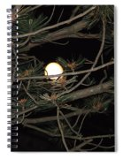 Moon Through Pines Spiral Notebook