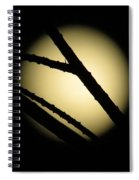 Moon Through The Branches Spiral Notebook