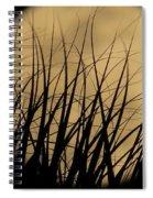 Moon Through The Palms Spiral Notebook