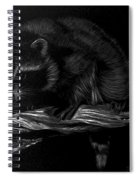 Moonlight Bandit Spiral Notebook