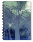 Moonlight Forest Spiral Notebook