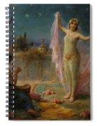 Moonlight Serenade Spiral Notebook