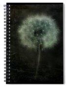 Moonlit Dandelion Spiral Notebook
