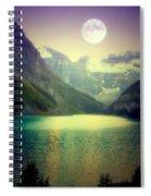 Moonlit Encounter Spiral Notebook