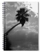 Moonlit Palm Spiral Notebook