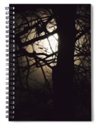 Moonlit Tree In The Forest Spiral Notebook