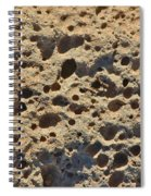 Moonscape Spiral Notebook