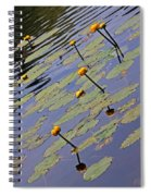 Moore State Park Lily Pads 1 Spiral Notebook