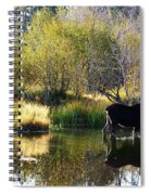 Moose Reflection Spiral Notebook
