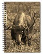 Moose Spiral Notebook