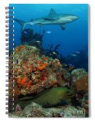 Moray Reef Spiral Notebook