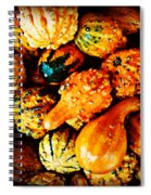 More Beautiful Gourds - Heralds Of Fall Spiral Notebook
