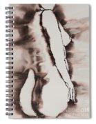 More Than Series No. 1384 Spiral Notebook