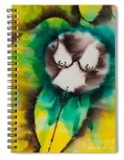 More Than Series No. 1421 Spiral Notebook