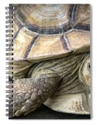 Morla Spiral Notebook