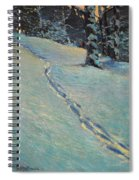 Morning After Snow Spiral Notebook