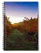 Morning At The Vineyard Spiral Notebook
