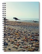 Morning Beach Preen Spiral Notebook
