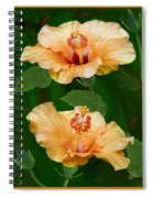 Morning Blooms - Hibiscus Spiral Notebook