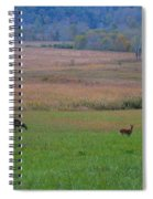 Morning Deer In Cades Cove Spiral Notebook