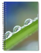 Morning Dew Drops Spiral Notebook