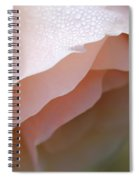 Morning Dew Peach Rose Flower Spiral Notebook