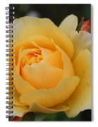Morning Dew Rose Spiral Notebook