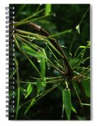 Morning Dews Spiral Notebook