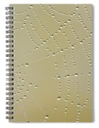 Morning Diamonds Spiral Notebook
