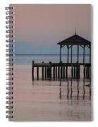 Morning Ducks Spiral Notebook