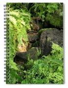 Morning Ferns Spiral Notebook