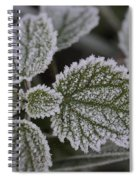 Morning Frost Spiral Notebook