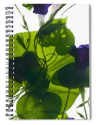 Morning Glory Rising Spiral Notebook
