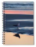 Morning Gull Spiral Notebook