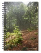 Morning In The Forest Spiral Notebook