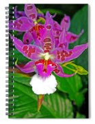 Morning Joy Orchid Spiral Notebook