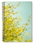 Morning Light Spiral Notebook