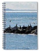 Morning Meeting - Lyme Regis Spiral Notebook