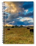 Morning On The Farm Two Spiral Notebook