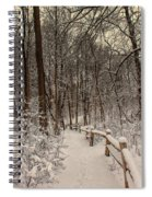 Morning Snow Path Spiral Notebook