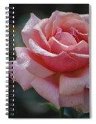 Morning Sparkles Spiral Notebook