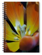 Morning Tulip Spiral Notebook