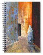 Moroccan Woman 02 Spiral Notebook