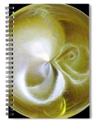 Morphed Art Globe 8 Spiral Notebook