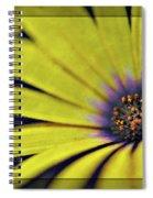 Morphology Spiral Notebook