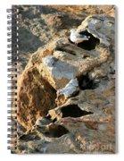 Morro Rock Nesting Spiral Notebook