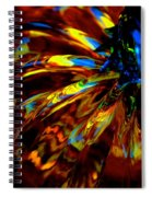 Morton Pumpkin Magik Spiral Notebook