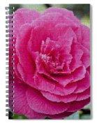 Mosaic Camillia Spiral Notebook